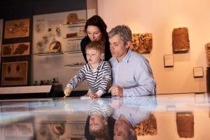 control de plagas museos quijote el hidalgo